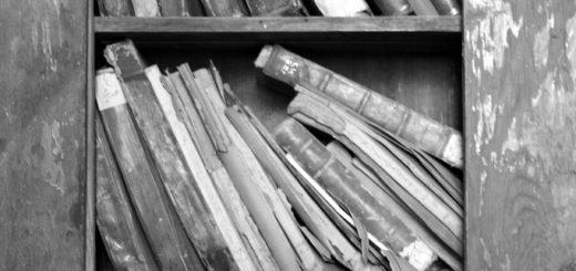 книги на полках, библиотека