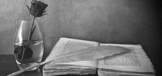 книга на столе и роза в колбе