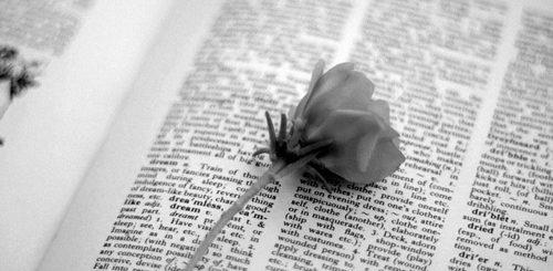 гербарий, книга и цветок