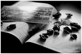 гербарий, книга, осень