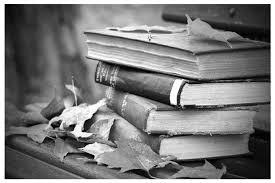 книги, осень, листья