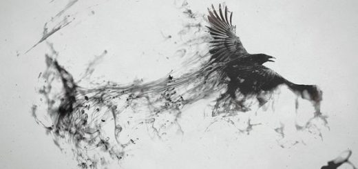 птица без крыльев, ворон