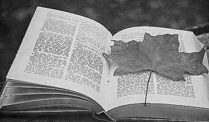 книга и гербарий, осень