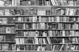 большой книжный шкаф