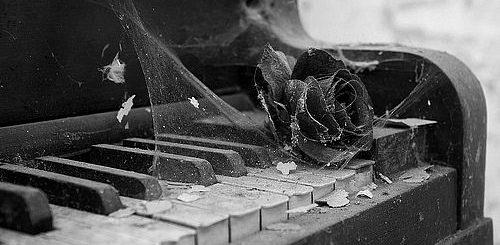 пианино и роза, грустное и красивое фото