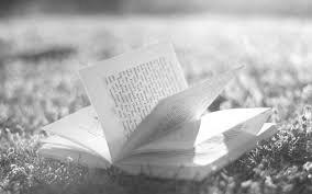 книга,, лето, лужайка