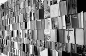 стена книг