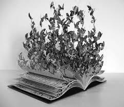 книга с бабочками, красивая картинка