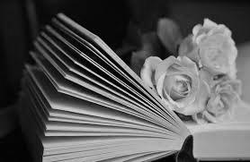 книга и розы