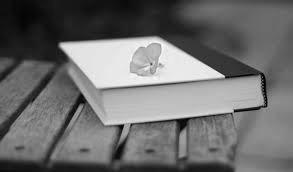книга с цветком на обложке