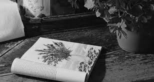 книга, гербарий, чтение