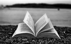 открытая книга любуется океаном