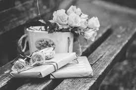 романтичные книги в парке
