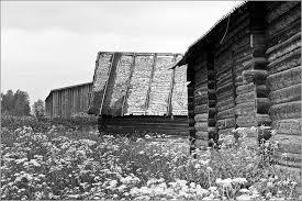 деревенские дома, село