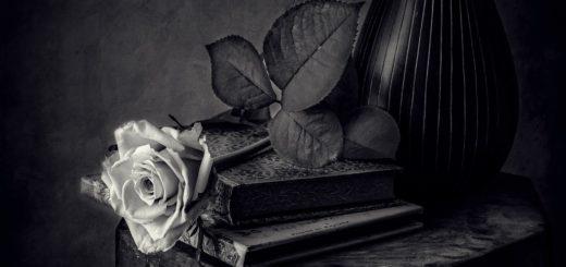 романтика, книги, цветы