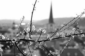 весна, капель
