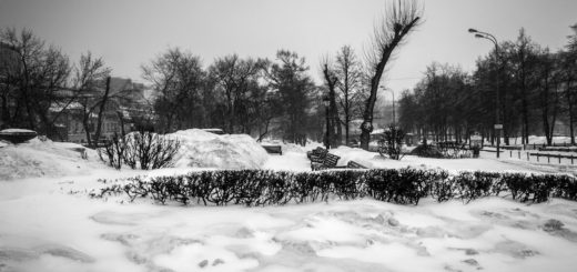 зима, приход весны