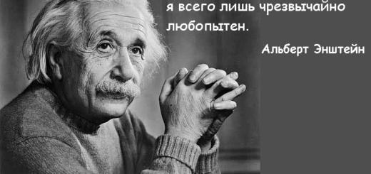 цитата о любознательности