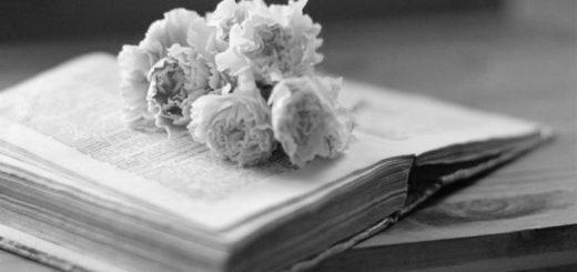 книга и весна