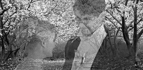 Раневская и Гаев в пьесе Вишневый сад