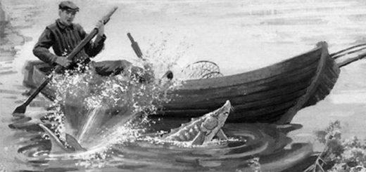 иллюстрация к рассказу Царь-рыба