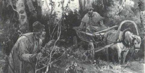 иллюстрация к рассказу Пересолил