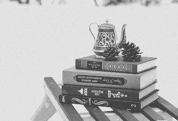 книги зимой