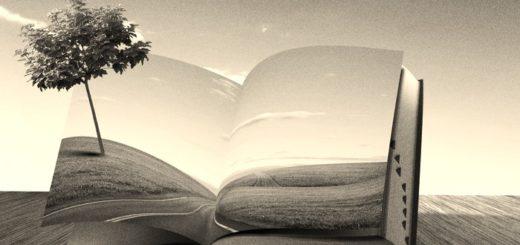 дорога книги