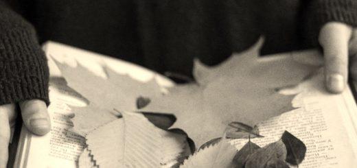 осень и книги